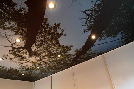 Printed Stretch Ceiling